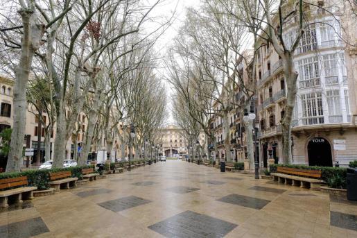 El centro de Palma, vacío, durante el estado de alarma.