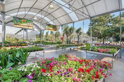 Los centros de jardinería vuelven a abrir el lunes.