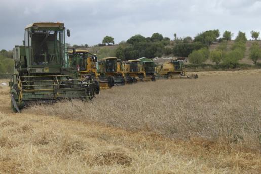 Las ayudas de Europa para el Programa de Desarrollo Rural (PDR) y en concreto la línea dedicada a inversiones en explotaciones es fundamental para la subsistencia del sector.