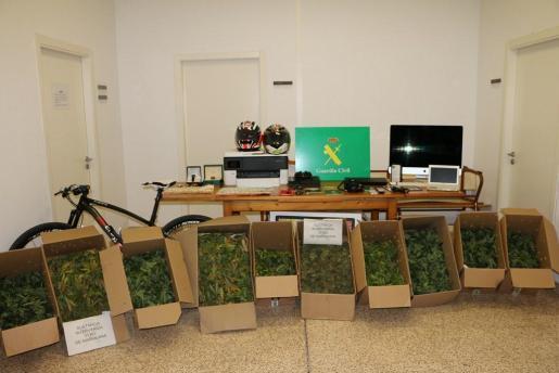 En el registro domiciliario llevado a cabo por la Guardia Civil se hallaron dos habitaciones dedicadas al cultivo de la marihuana, una zona de secado de las plantas y otra donde se dosificaba y preparaba para la venta.