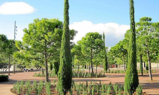 Las expropiaciones para llevar a cabo el Parc de sa Riera siguen pesando en las cuentas de Cort.
