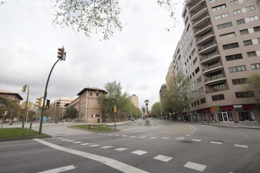 La protesta de Vox discurrirá por Avingudes.