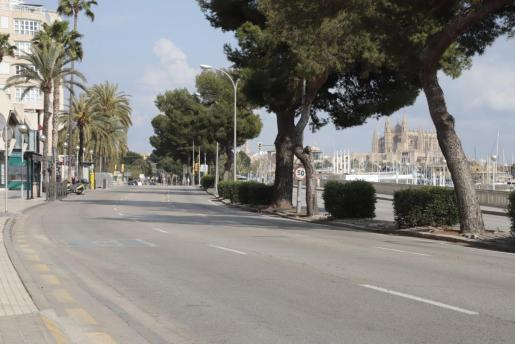 El Paseo Marítimo de Palma cambiará de aspecto a partir del 25 de mayo.