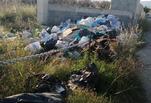 Viviendo entre basura