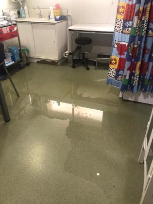 Simebal denuncia que el área de Pediatría de Pere Garau está inundada de aguas fecales.