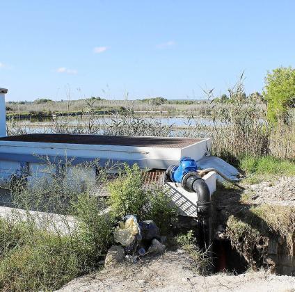 La depuradora de Son Bosc, que da servicio a la Platja de Muro y Can Picafort, funciona por encima de su capacidad inicial y con frecuencia ha producido vertidos que han afectado al parque natural de s'Albufera, junto al cual está situada.