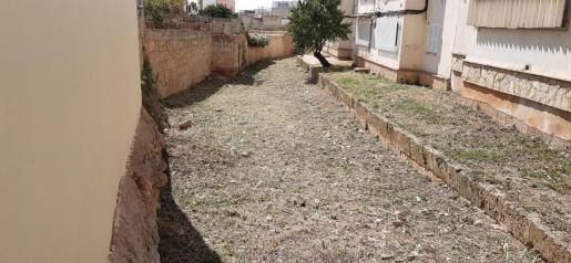Imagen de la zona del torrente de La Vileta, ya limpio.