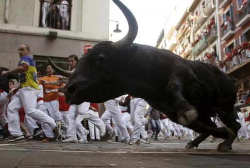 Uno de los toros de la ganadería sevillana de Juan Pedro Domecq, a su paso por el tramo de Mercaderes, durante el séptimo encierro de los sanfermines 2012.