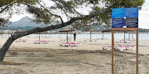Imagen de la playa de Alcúdia este lunes totalmente equipada pero desierta de bañistas en una jornada de lluvia intermitente.