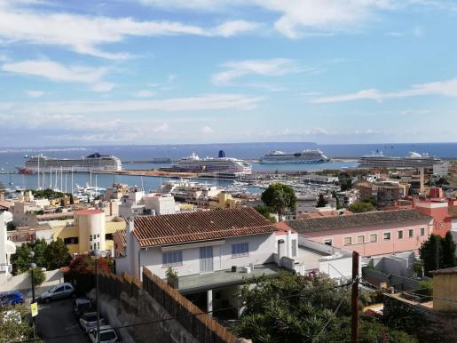 El año pasado 228 cruceros tenían su base en el puerto de Palma, desde donde iniciaban su ruta.