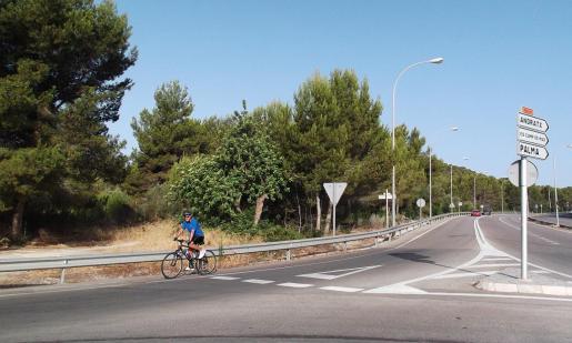 Imagen de las parcelas que se encuentran junto a la carretera de Andratx.