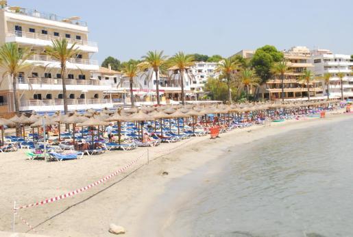 Los apartamentos de Mallorca estarán en Calvià.