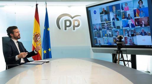 El presidente del PP, Pablo Casado, durante la videoconferencia que ha mantenido esta tarde con líderes del PP europeo.