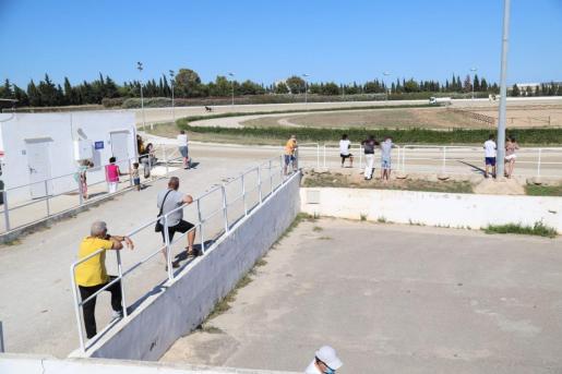 Panorámica de una de las zonas con público en el hipódromo de Son Pardo, que ha albergado la primera prueba deportiva con aficionados en los últimos tres meses y medio.