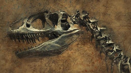 La comunidad científica ha barajado diversas teorías sobre la desaparición de estos grandes vertebrados.
