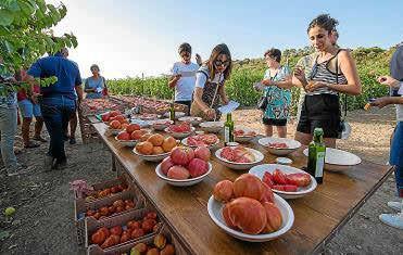 Los responsables de este proyecto agrícola consideran que es catando los productos cuando se puede decidir si son buenos o no.
