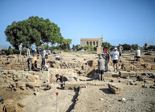 Hace un año excavaba en Pol·lèntia un equipo de casi cien personas. El aumento del número de participantes en los últimos años había permitido ampliar las zonas de excavación para tratar de localizar los restos del campamento inicial que pudo dar lugar a la fundación de la ciudad romana.