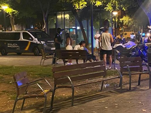 Imagen de un momento del control policial en el parque Wifi de Palma.
