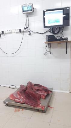 Imagen del atún rojo descomisado.