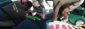 Rescatan a una tortuga marina a doce millas de la costa de Mallorca