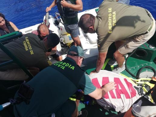 Agentes del Servicio Marítimo de la Guardia Civil y miembros del Ejército de Tierra con el animal una vez rescatado.