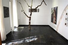 La galería ocupa una casa del siglo XIX.