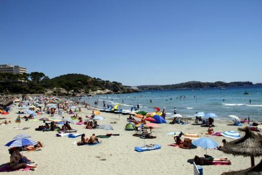 La playa de Peguera se situa en un entorno urbano, custodiado por colinas y con un espléndido paseo marítimo a sus espaldas. Debido a su popularidad, esta playa disfruta de una alta ocupación.