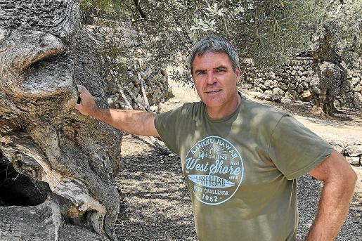 Miquel Arbona posa en medio de un olivar y asegura que ahora son momentos de cambio para muchos sectores.