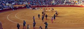 Polémica por una corrida de toros en El Puerto