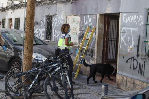 Imagen de la redada policial en Camp Redó.