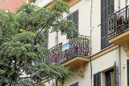 El precio del alquiler se ha disparado un 53 por ciento en Palma durante los últimos años.