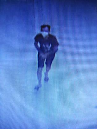 Una cámara de seguridad captó al presunto ladrón con el bolso de la anciana.