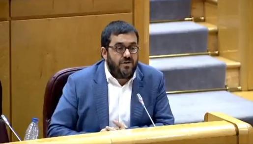 El senador de MÉS per Mallorca, Vicenç Vidal, durante una de sus intervenciones.