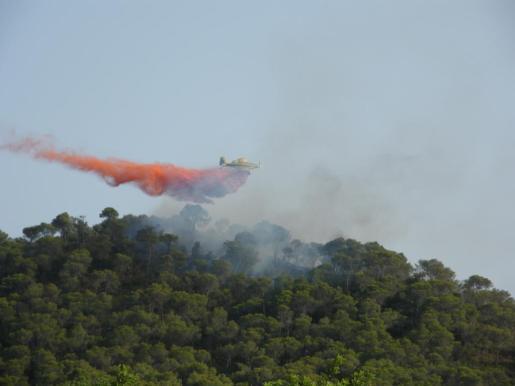 Los Bomberos de Mallorca en plena actuación para sofocar el incendio forestal de Sant Salvador.