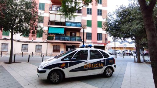 Un coche policial, en uno de los registros.