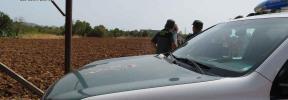 Dos detenidos por hacerse pasar por Policía Judicial para robar marihuana
