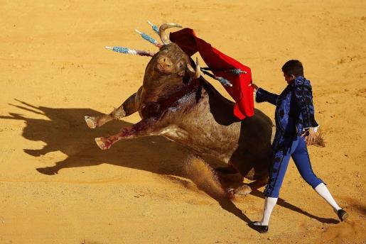 Los toros vuelven a retransmitirse en TVE después de seis años.