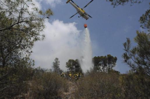 El incendio de Cala Fornells ha calcinado 0,9 hectáreas de pinar.