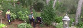 La Guardia Civil desmantela en Ruberts la mayor plantación de marihuana en los últimos años