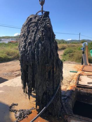 El 'monstruo de las toallitas' en la platja d'en Bossa.