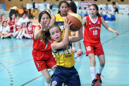Imagen de un partido de la categoria mini de baloncesto.