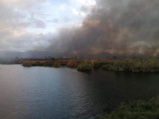 El fuego ha calcinado 300 hectáreas.