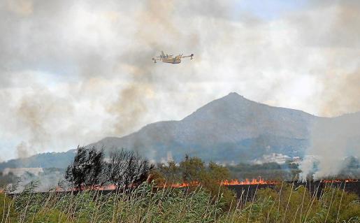 Un Canadair sobrevolando el frente del incendio.