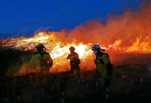 Desde el año 1983 se han producido 364 incendios en el que se considera 'punto más caliente' de Baleares.