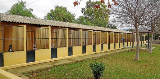 Los animalistas denuncian que las instalaciones de Son Reus están muy viejas y deben mejorarse.