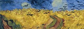 La explicación científica de por qué Van Gogh usaba tanto el amarillo en sus cuadros