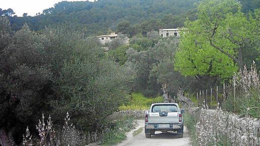 Camí de Biniatzent, por el que se accedía a la obra ilegal demolida por el Ajuntament por orden judicial.