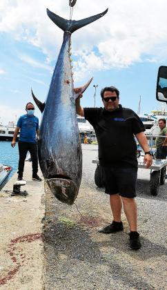 El mar balear es uno de los mejores caladores del Mediterráneo occidental. En Mallorca las capturas de atún rojo están limitadas a las embarcaciones artesanales, de artes menores, no superiores a 12 metros, con una actividad más sostenible.