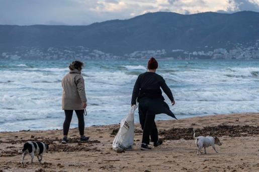 Varias personas pasean por la playa de Mallorca.