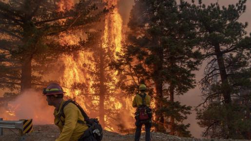 Se trata de Technosylva, una compañía leonesa cuyo software predictivo fue muy útil durante los incendios en California.